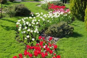 Антимонопольщики запретили сажать цветочные клумбы в Челябинске