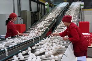 ФАС вступилась за торговую сеть в споре с птицефабрикой