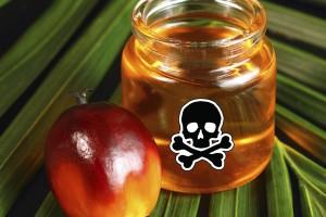 ФАС против ограничений на пальмовое масло