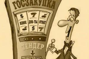 Реформа системы госзакупок откладывается до осени