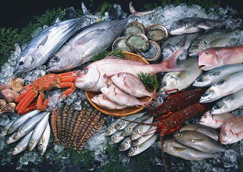 ФАС наказала 4 компании за сговор на торгах по поставке рыбы для МВД