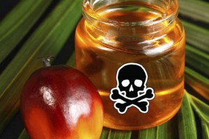 Правительство высказалось в поддержку введения ограничений на пальмовое масло