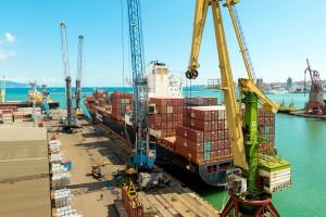 ФАС не учитывает мнение экспертов при разработке правил доступа к услугам портов