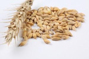 Суд уменьшил в 2 раза штрафы ФАС за мелкий картель на закупку пшеницы
