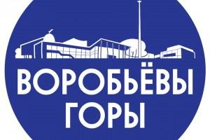 Дело ФАС о картеле на торгах по капремонту на Воробьевых горах устояло в суде