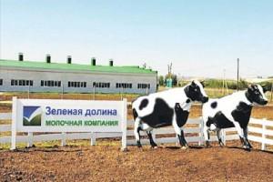 ФАС оштрафовала молочников Белгородской области за аффилированность с фондами поддержки