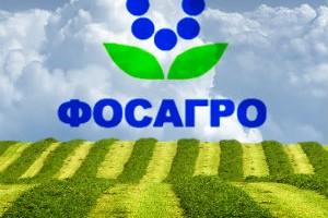 Зам. руководителя ФАС Цыганов и начальник химического департамента Харитонашвили лоббируют интересы «ФосАгро» и «Апатита»