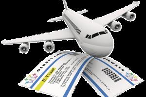 МВД оспорит решение ФАС о нарушениях при покупке авиабилетов в суде