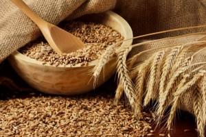 ФАС проиграла дело против схемы товарного кредитования сельхозпроизводителей Татарстана