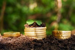 ФАС хочет ограничить свободу регионов в распределении субсидий аграриям