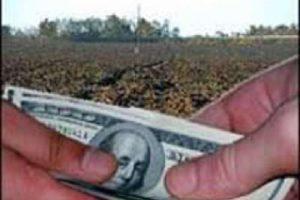 Суд не дал ФАС отобрать принадлежащую малому предприятию землю под видом торгов