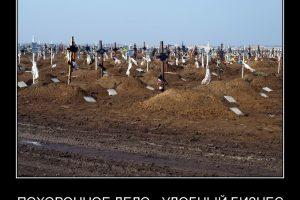 Суд согласился с ФАС, что Каслинское городское поселение неправомерно передало функции организации похоронного дела ООО «Ромашка»