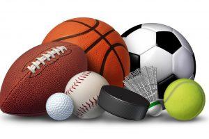 Решение ФАС против марийского микропредприятия за нарушения при мелких закупках спортинвентаря устояло в с суде