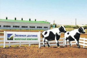 Дело ФАС против белгородской «ЗЕЛЕНОЙ ДОЛИНЫ» за преимущественные условия получения субсидий устояло в апелляции