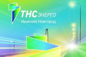 Суд подтвердил решение ФАС, по нарушениям в ходе торгов компанией-поставщиком электроэнергии в Нижегородской области