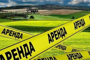Суд не дал ФАС назвать антиконкурентными действиями неразмещение информации о передаче земельного участка фермеру на локальном сайте