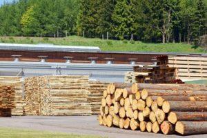 Со вторым участником лесного аукциона надо заключать договор по предложенным им цене, а не отказавшегося первого: кассация подтвердила решение ФАС