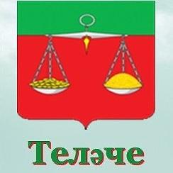 Суд не увидел признаков картеля в публикации информации на русском языке в татароязычной газете